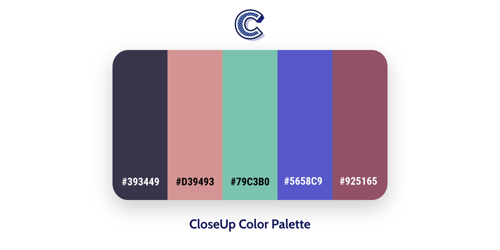 the featured image of closeup color palette