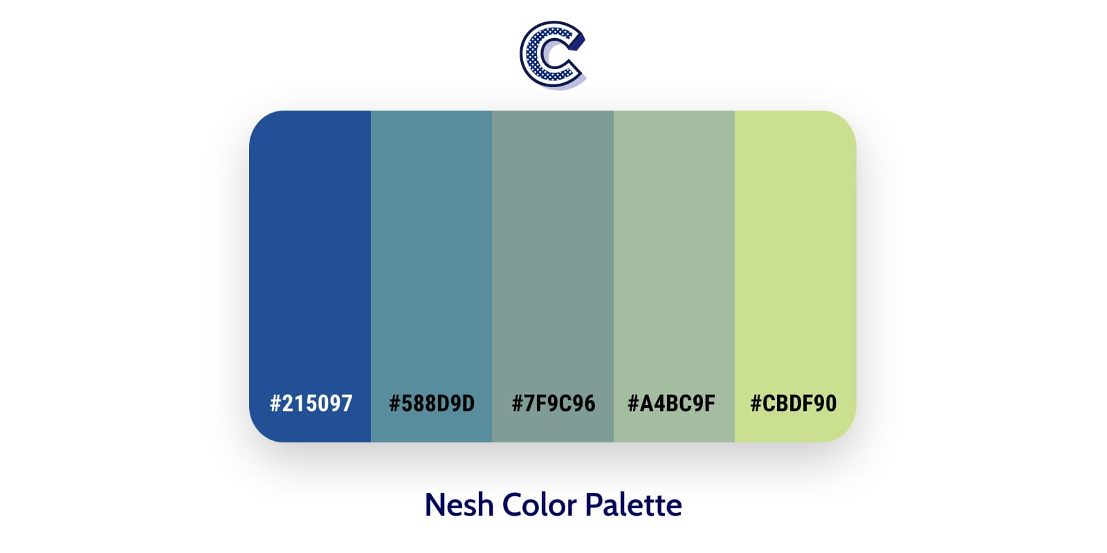 the featured image of nesh color palette